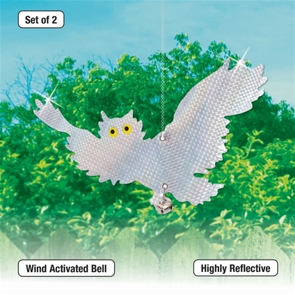 Holographic Owls Set of 2